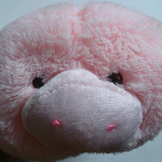 plush pink pig cover for hot water bottle