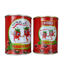 Canned tomato paste factory for direct sale manufacturer for direct sale