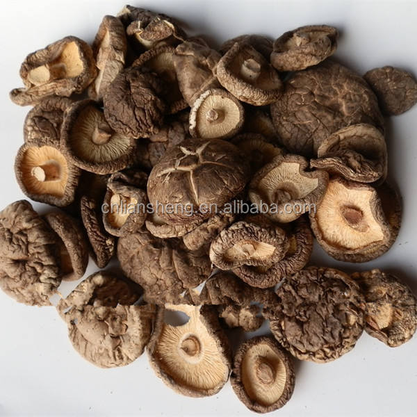 Best quality dried shiitake chips truffle mushroom cultivated bags
