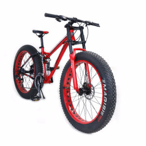 China Canton Fair 2020 Vet Cyclus Sneeuw Mountainbike Fat Tire Fiets