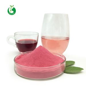 Manufacturer bulk organic raspberry fruit powder