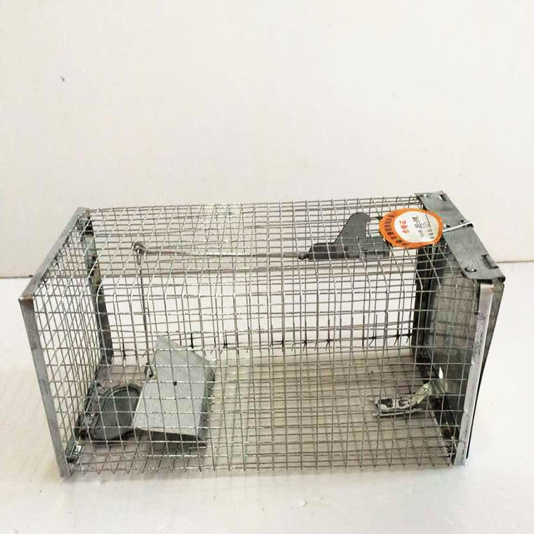 Wire Mesh Metal Mouse 쥐 케이지 동물 Trap Cage In All Sizes