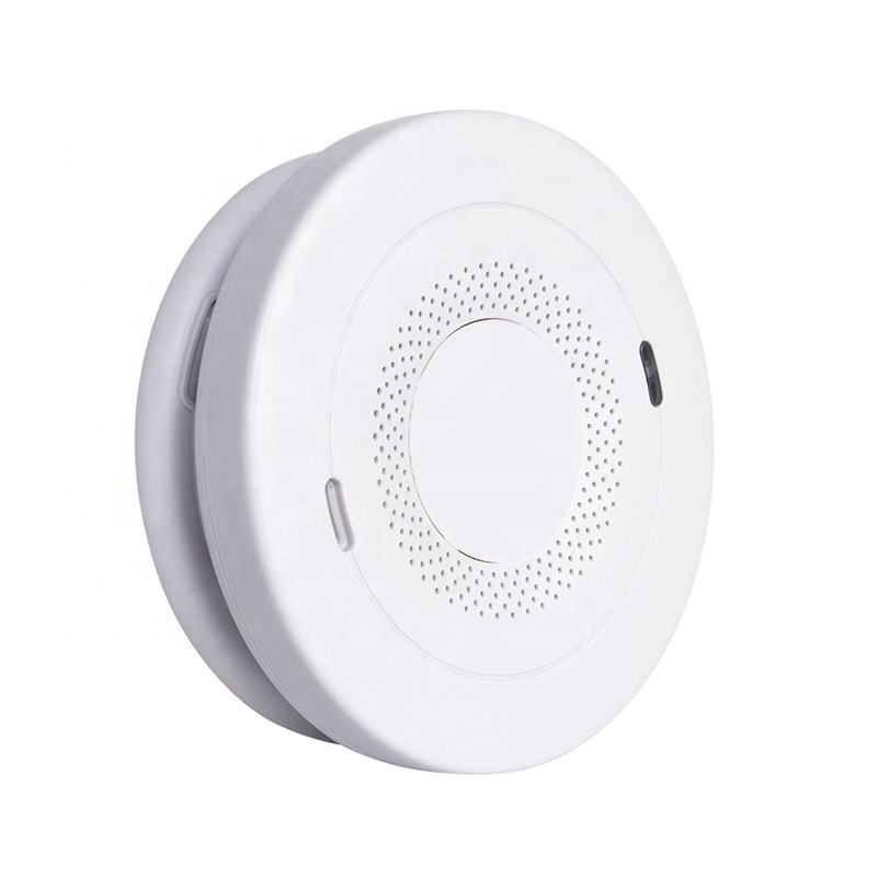 battery operated smoke carbon monoxide alarm 10 year battery