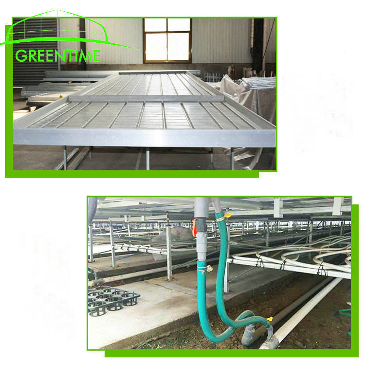 agriculutral green house ebb flow flood rolling bench for nursery farming