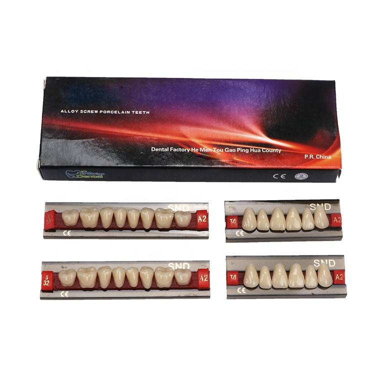 China wholesale popular shades and familiar moulds alloy screw porcelain denture teeth