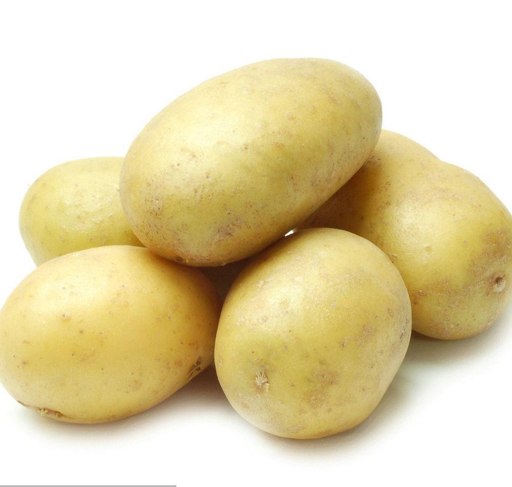 Fresh Sweet Potato/Sweet Potato Seed