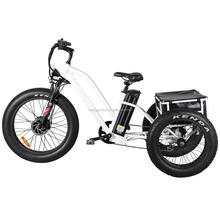 2020 new model 20 inch cargo adult electric tricycle with good aftersale service