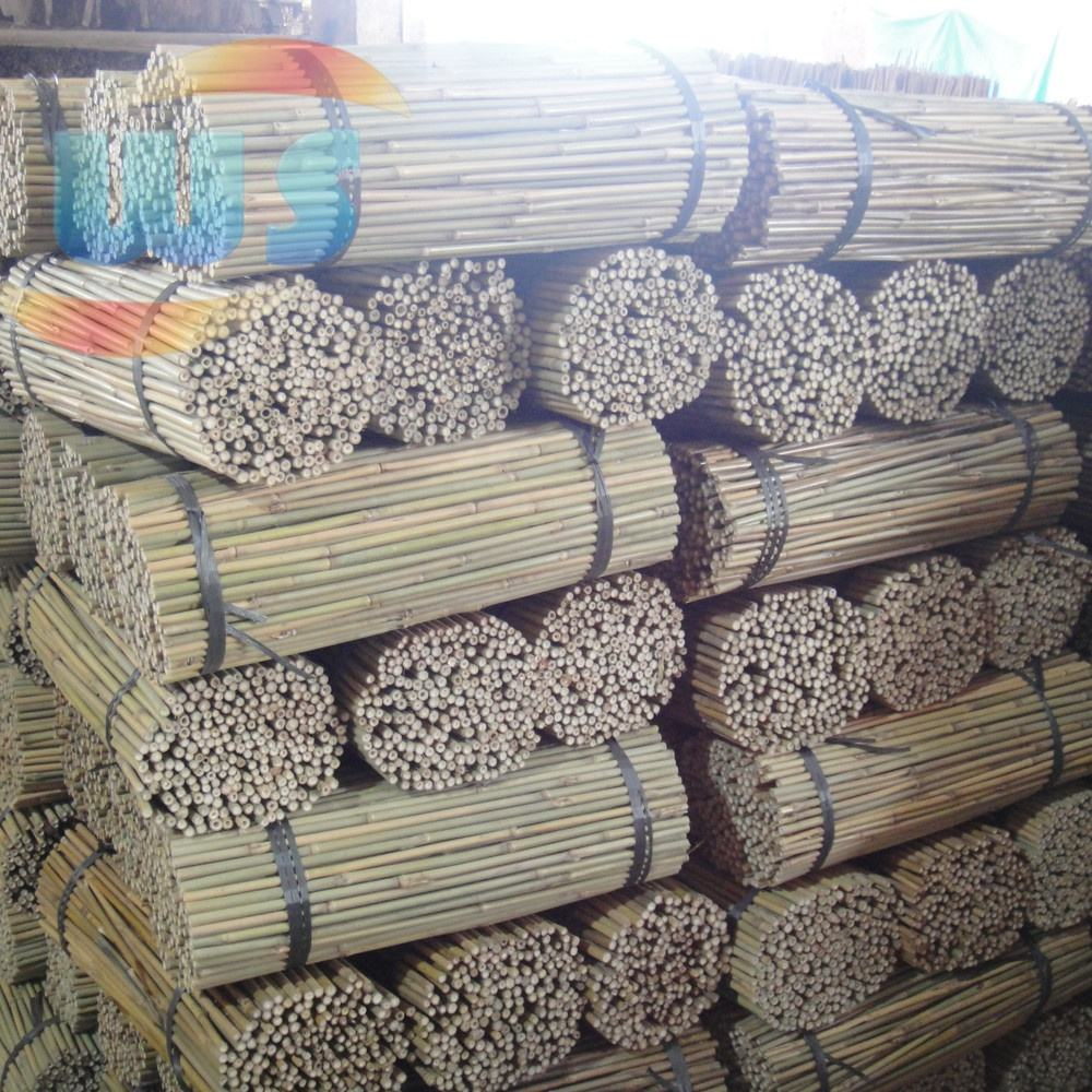 Agriculture/Bamboo Raw Materials/Plant support of bamboo 60cm 10-12mm