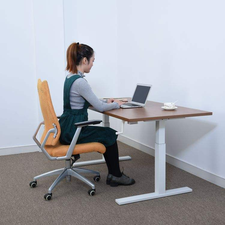 Height Adjustable Study Standing Electric Modern Lifting Office Sit Stand Desk