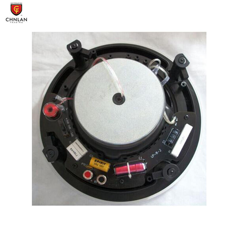 Hot Sell 8 Inch Home Theatre Sound System 8 ohm Hifi Coaxial Frameless Ceiling Speaker