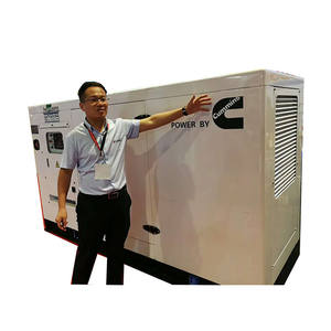 CUMMINS Brand Diesel Generator Set Portable With Best Price By CNMC Group