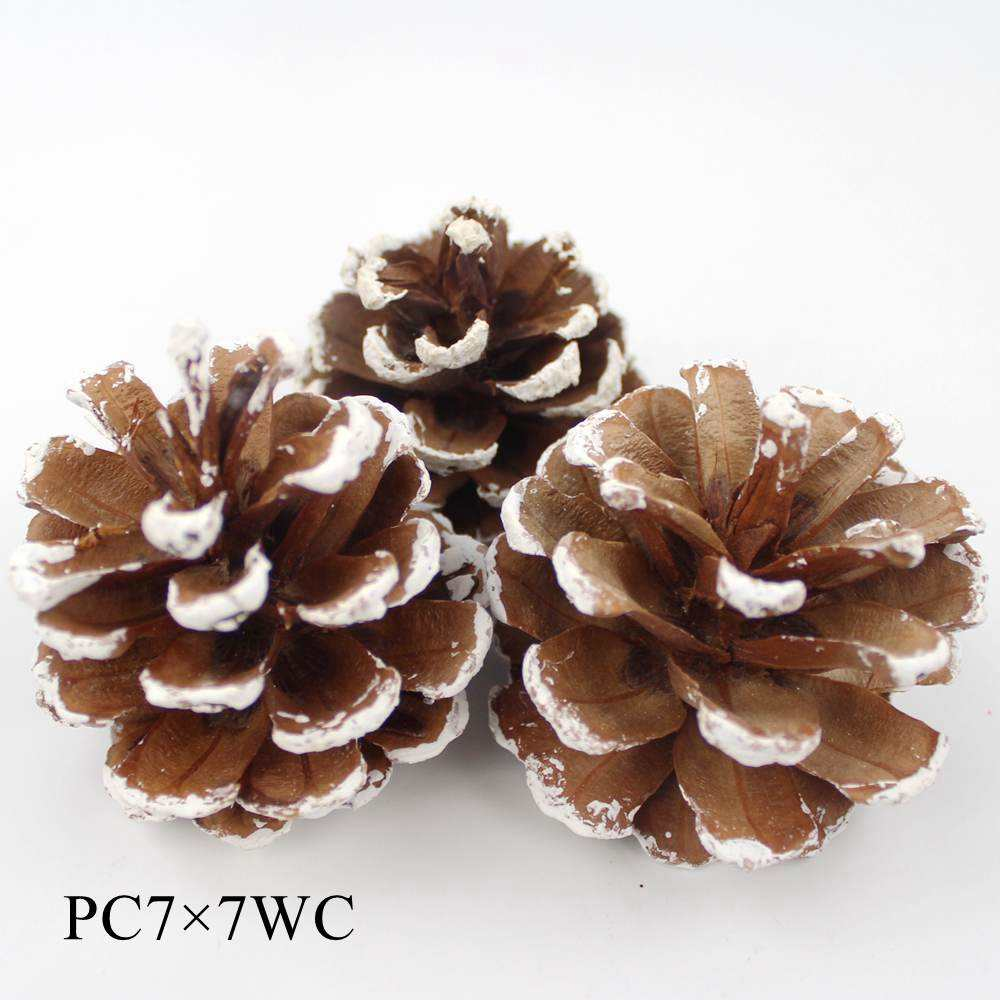 White tip Pine cone on pick wholesale #PC7X7WC