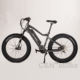 New Designed Electric Bike Europed 26 Inch Motor Bicycle Mid Drive Electric Bike E Power Cycle