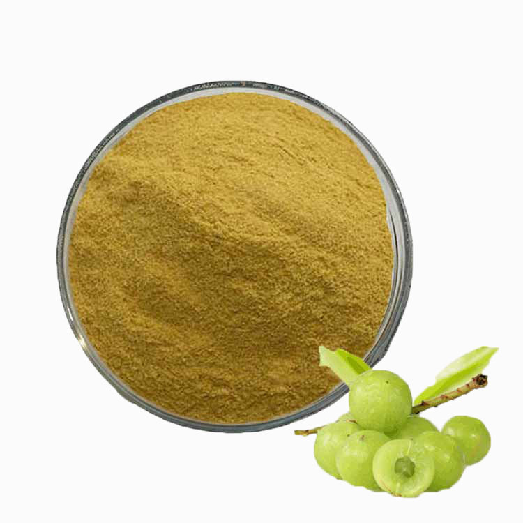 Best sale antioxidant Organic Amla/Indian Gooseberry/Emblica Officinalis extract polyphenols for hair oil and shampoo