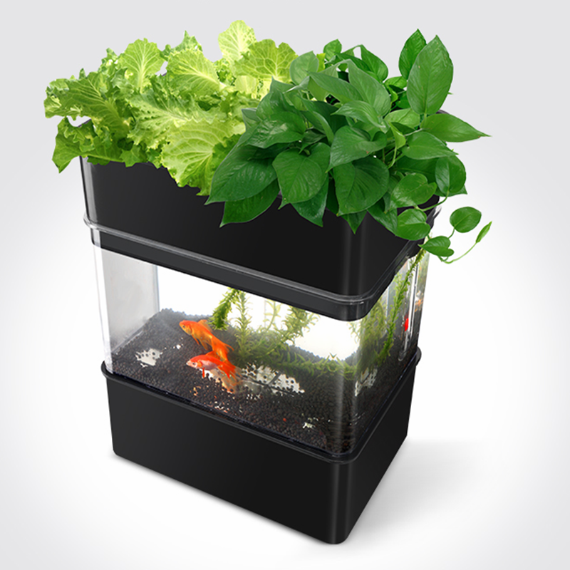 Mini Smart Garden Company multi-function fish tank aquaponic kit