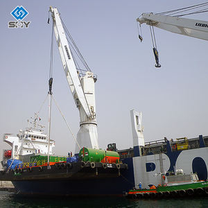 Offshore Pedestal Knuckle Boom Marine Cranes for Sale