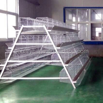 Battery Cages Laying Hens/Cages For Chicken Used(A Type & H Type Layer Chicken Cage)