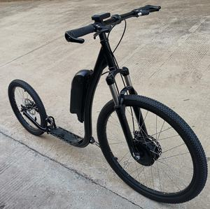 2019 electric bike/New design Electric Kick Scooter/Adult Scooter (SY-SC2620E-S)