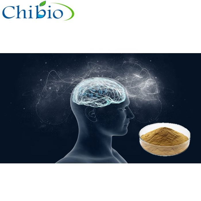 Pure 90045-36-6 Ginkgo Biloba extract powder with best price for brain health