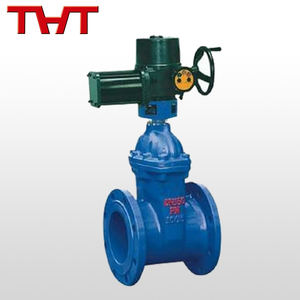 China supplier pn16 electric actuated double flanged gate valve