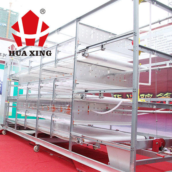 feeders drinkers turkey farms feeding flooring system heater husbandry poultry equipment for broiler