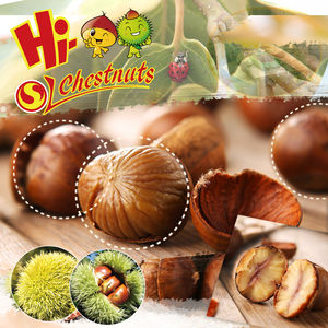 Ready to Eat Ringent Chestnuts Wholesale Packaged OEM Snacks