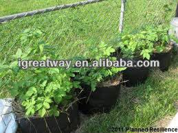 Herb Garden Pots Herb Garden Pots Suppliers And Manufacturers At