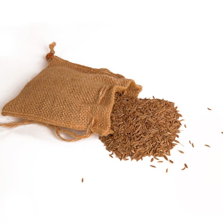 Wholesale High Quality Singapore Brand Raw Dried Cumin Seed Spice Powder With 2 Years Shelf Life