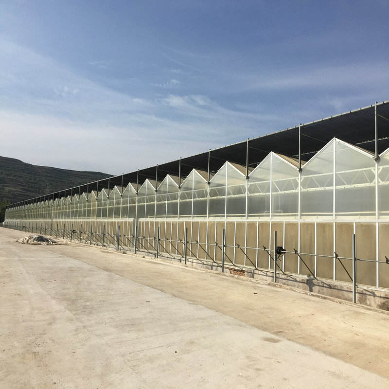 polycarbonate sheet greenhouse for agriculture