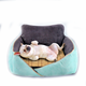 Luxury Memory Foam Elevated Dog Bed
