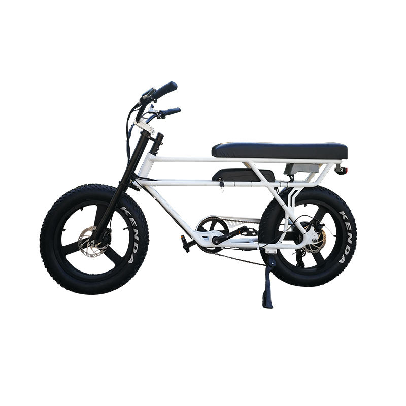 new arrival suspension front fork fat tire electric bike with leather saddle