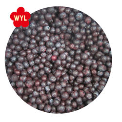 frozen berry good quality wholesale supply iqf frozen Blueberry