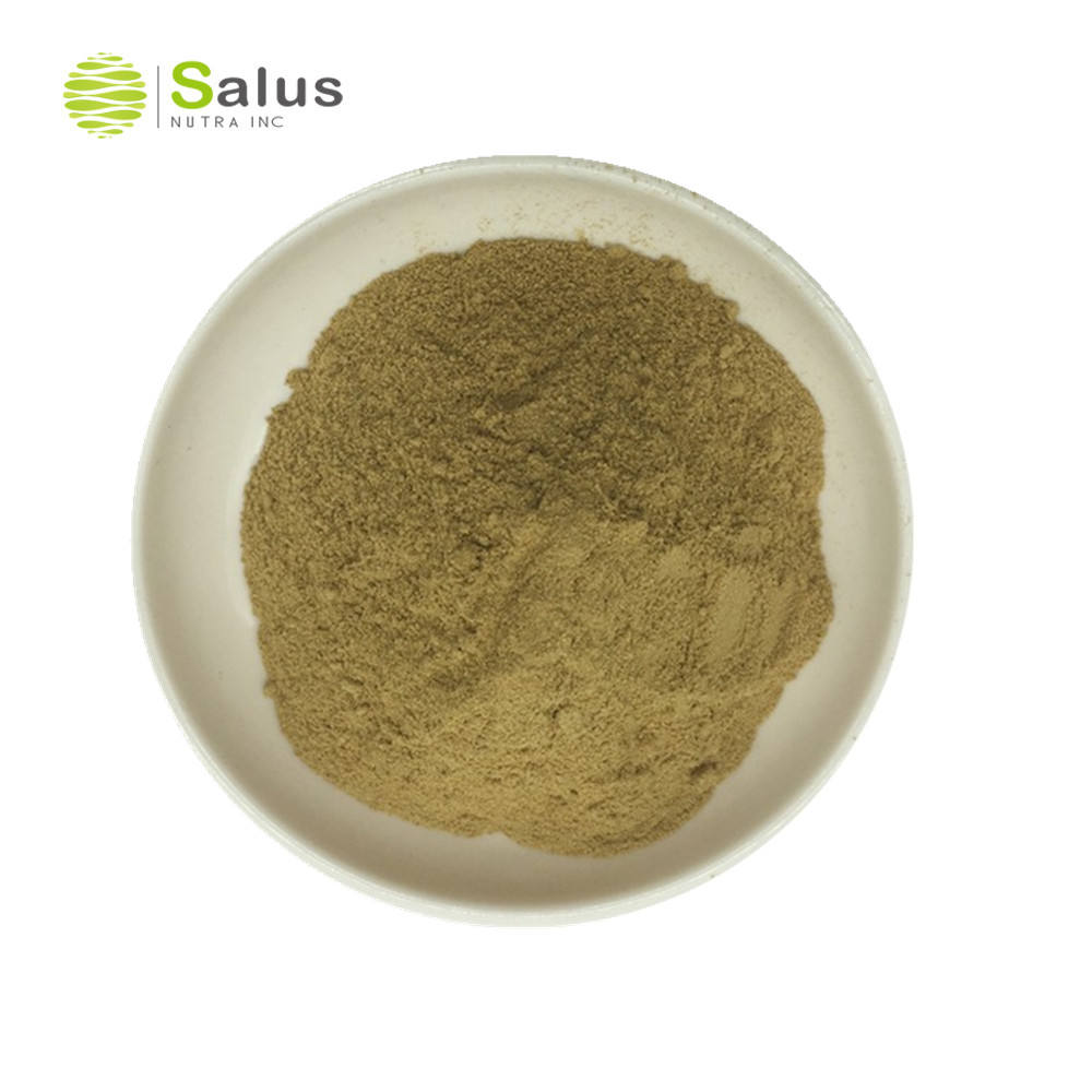Beste Prijs Chlorogeenzuur Eucommiaceae Ulmoides Extract