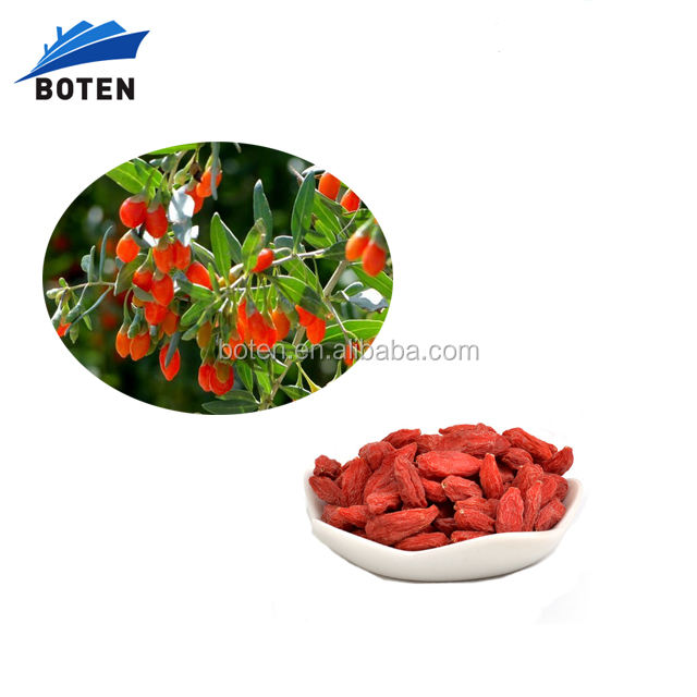 Best Goji Berries Dried Fruit, goji wolfberry