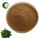 Best Selling Natural Organic Kelp Extract Powder/Pure Natural Plant Extract Laminaria Kelp extract/Kelp Extract Powder