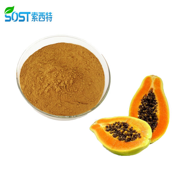 100% Natural Organic Papaya Extract/Papaya Fruit Leaf Extract Powder