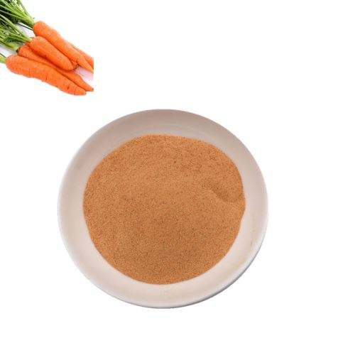 Wholesale high quality no additive organic dehydrated carrot powder