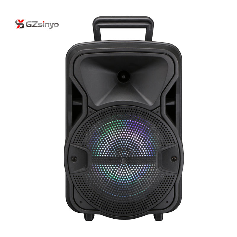 Economical 8 Inch Fashion Portable Subwoofer Trolley Speaker With Usb Port