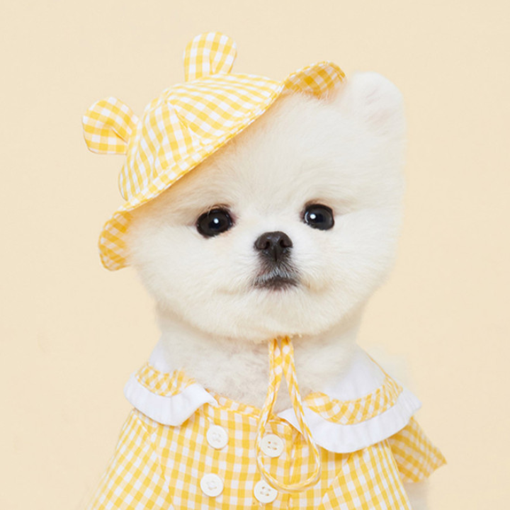 Hot Sale Cute Pomeranian Puppy Elegant Suit Summer Cosy Yellow Picnic Leisure Pet Skirt with Hat Pink Gingham Bulldog Dog Shirt