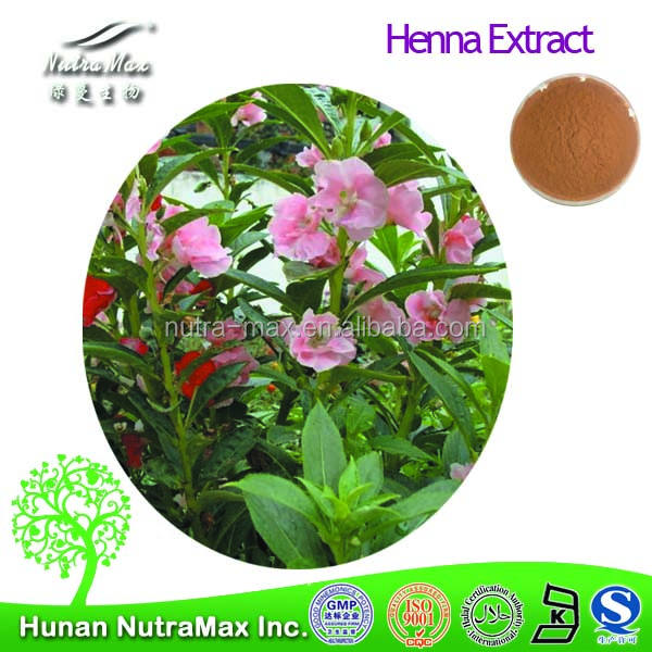 Top Quality Lawsonia alba Extract,Lawsonia alba Extract Powder,Henna P.E.