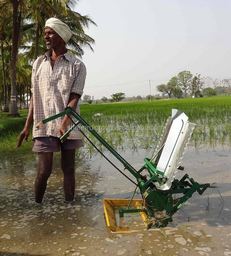 Handmatige Rijst Plantmachine In India