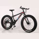 Factory supply 26 inches 21 speed bike high carbon steel fat tire mountain bike