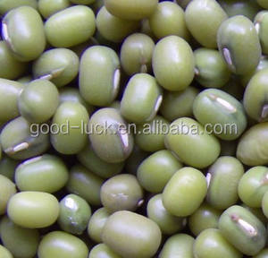 Chinese Green Mung Beans / Green Gram /Moong Dal Unhulled