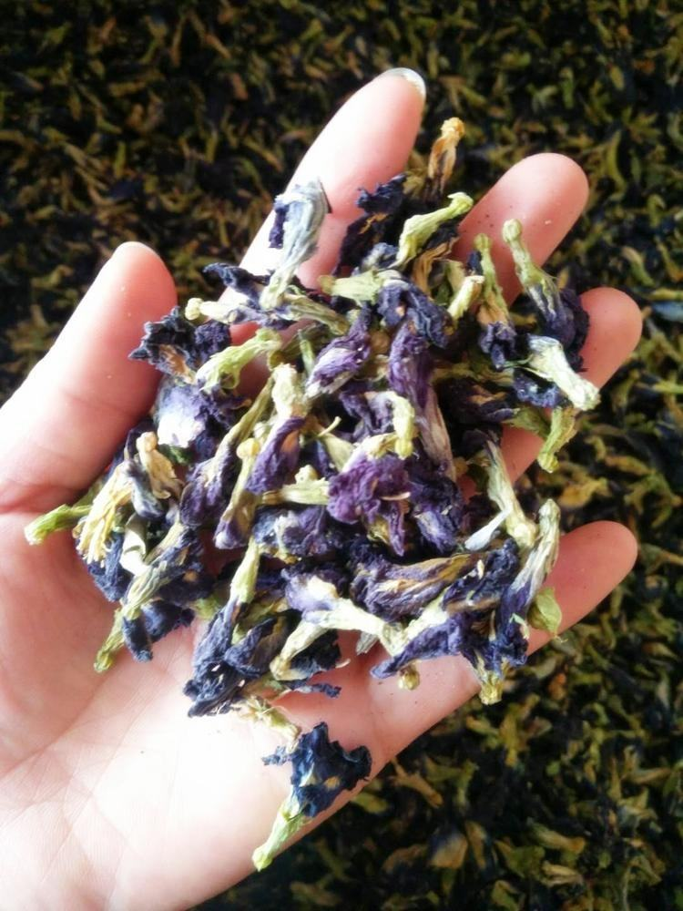 Chinese Medicine Organic Dried Blue Butterfly Pea Flower Herbal Tea