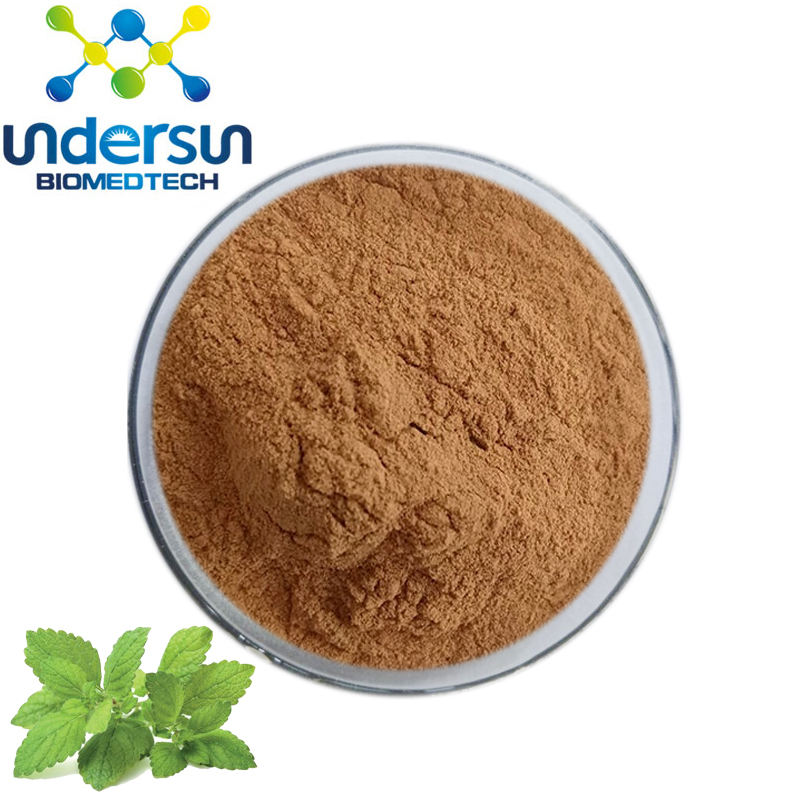 Undesun supply 100% natural 3%-5% rosemarinic zuur citroenmelisse extract