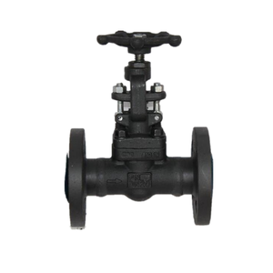 factory supply 800lb forged steel gate valve