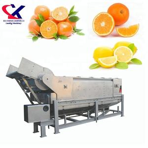 Large Scale High Quality Fruit Oil Extraction Process Machine