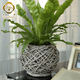 Wholesale handmade wicker garden basket plant flower pot