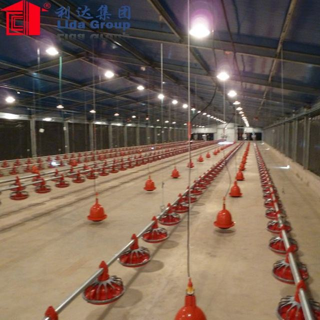 chicken layer house poultry farm house design layer egg chicken cage 80m*15m*3.2m