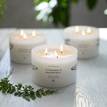 Scented Candles Aromatherapy Soy Wax  candles Gift Candles
